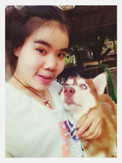 Dog Dogs Enjoying Life good evening ChiangMai,Thailand /happy with somebody who near me and never let me alone??