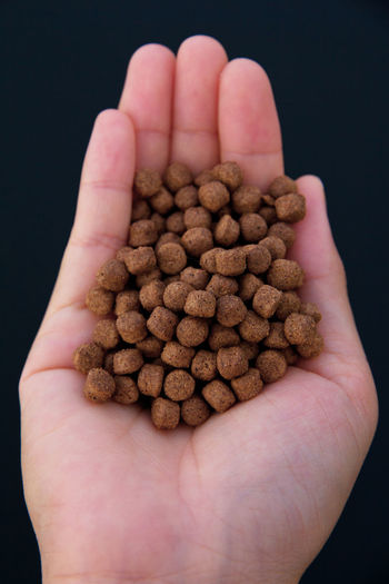 Aquarium fish feed Feeding  Animal Food Black Background Close-up Coffee Bean Day Feed  Focus On Foreground Food Food And Drink Freshness Hands Cupped Healthy Eating Holding Human Body Part Human Finger Human Hand Pet