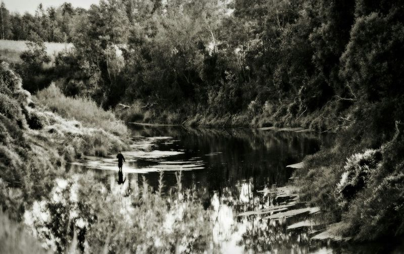 Рыбалка река Колокша лето