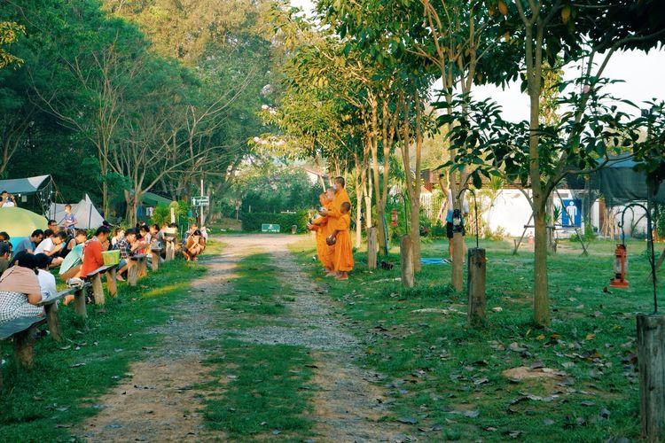 Group of people walking on footpath amidst trees