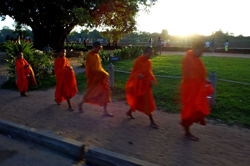 Angkkor, Cambodia Angkor Blurred Motion Bouddhisme Cambidia Clear Sky Lifestyles Medium Group Of People Movement Orange Color Outdoors Religion Sun Sunlight Tree Young