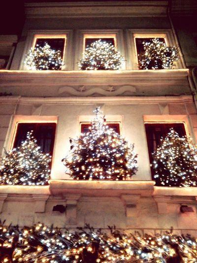 Fete Noel2015 Christmas New Year Light Guirlandes Sapin Street Photography