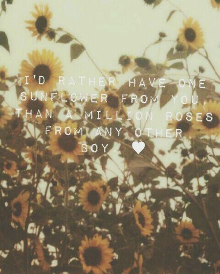 Sunflowers QuotesTumblr Quotes