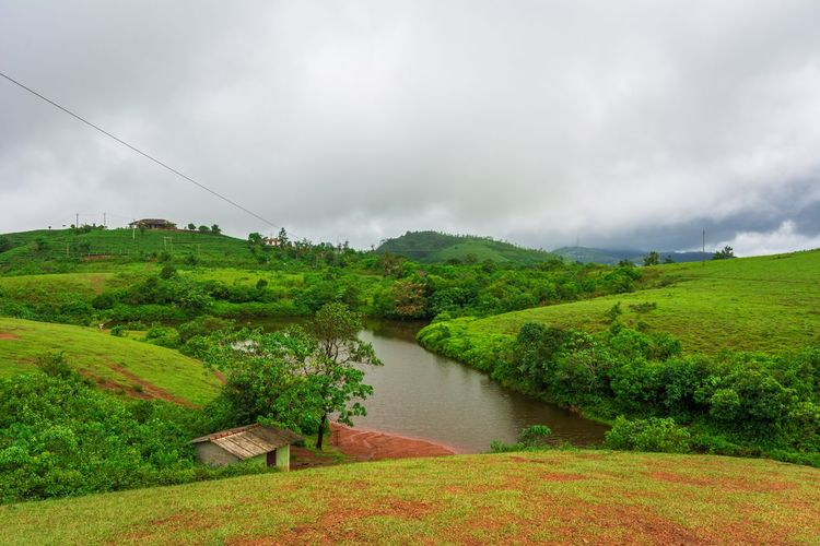 Scenic view of river amidst green landscape against sky