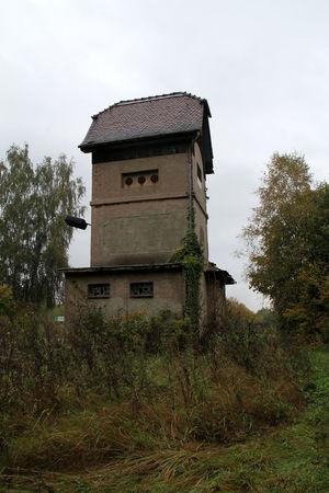 Architecture Built Structure Day Nature No People Ostdeutschland Outdoors Rotten Rotten Places Sky Tree Verfallen Village Wiederaufbau Wildnis