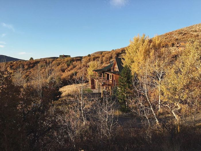 the house is surrounded by golden glow. poised and ready for a heap of snow. 🏔🍁✨ Heber City Wasatch Mountains Utah Wasatch Back Poems Architecture Nature Built Structure Sky Real People Plant Landscape