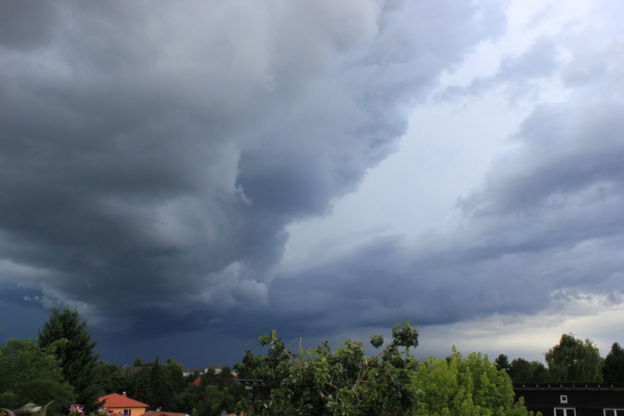 cloud - sky, tree, sky, nature, storm cloud, weather, beauty in nature, no people, storm, day, low angle view, scenics, growth, outdoors, thunderstorm, power in nature, tornado, lightning