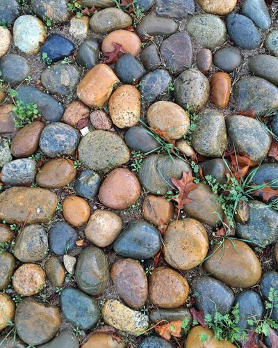 Nature Outdoors Rocks Rain Wet Grass Check This Out Wet Rocks My Best Photo 2015 Showcase: December