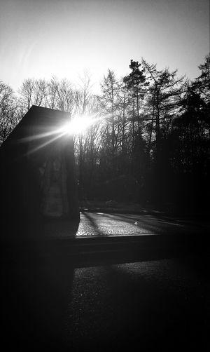 Black And White Photography Eye4black&white  Snapshot Black&white
