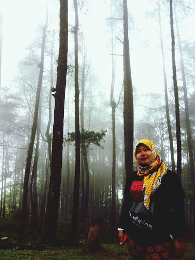 Misty Black Forest Mystical Forest :) Puncaklawang #hello misty