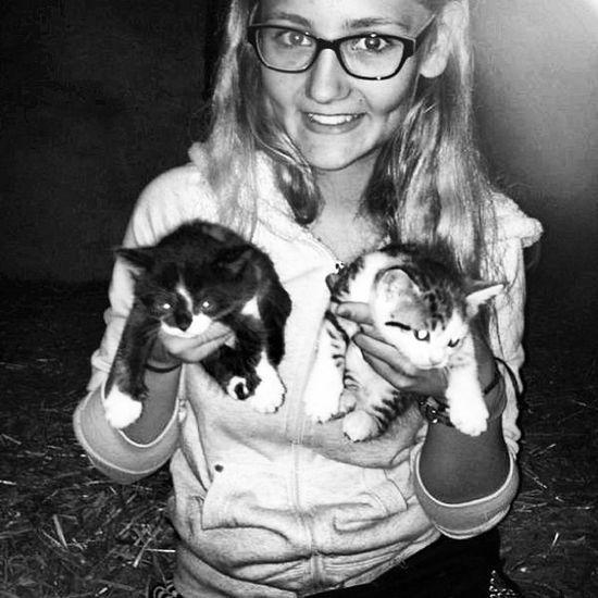 5 Süße Katzen Babys 4wochen 😍