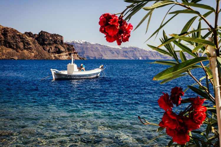 Aegean Sea Beauty In Nature Blue Boat Calm Flower Greek Islands Horizon Over Water Idyllic Nature Paradise Red Rippled Rock Formation Santorini Scenics Sea Tranquil Scene Tranquility Travel Destinations Water