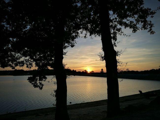 Soleil Couchant Lac De Bouzey Lac