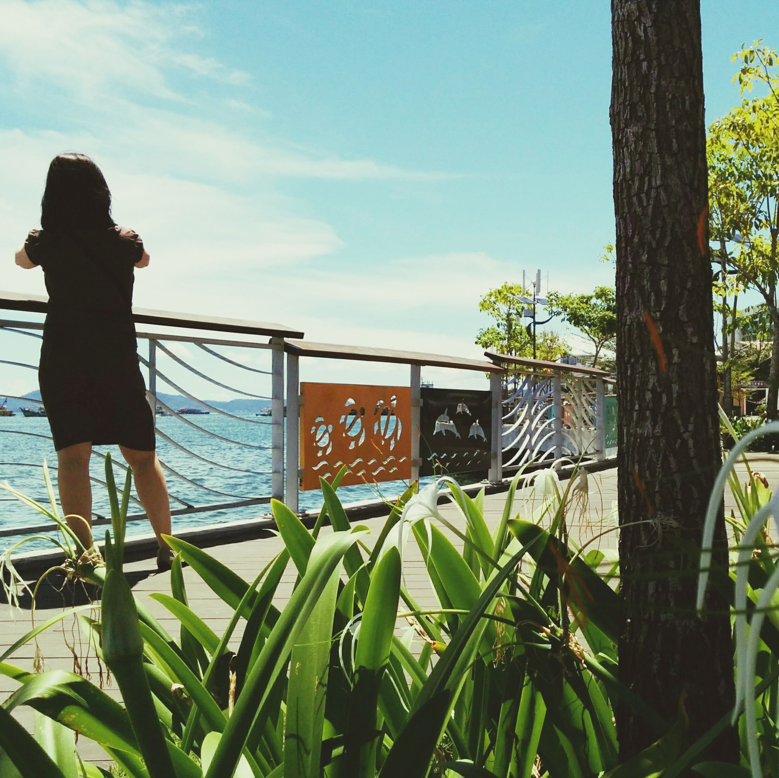 day, tree, one person, outdoors, built structure, sky, low angle view, architecture, nature, growth, women, real people, building exterior, people