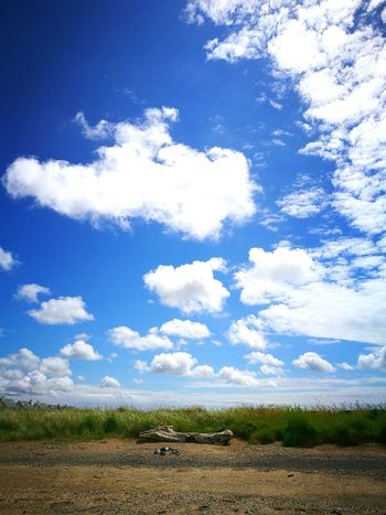 Mychynys Llanelli Beach Driftwood Sky Clouds Sand Beachlife Log Logs Quiet No People Deserted Beach Sand Beach And Sky Sand And Sky Drift Wood On Beach Drift Wood  Quiet Places Quiet Fresh On Eyeem