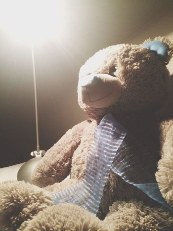 Good night? Good Night Bear Home Sweet Home Bed Time ♥