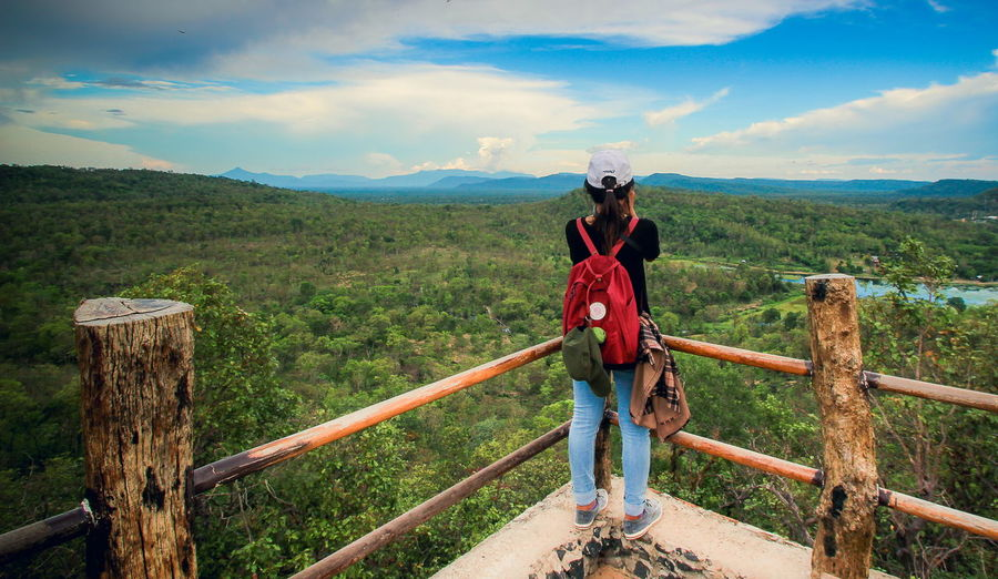 Rear view of woman looking at forest from observation point