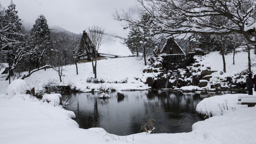 Beauty In Nature Cold Temperature Japan Japan Photography Lake Nature No People Scenics Shyraphotography Small Village Snow Sony Tranquility Tree Water Winter