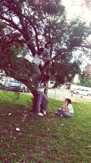 Princesses Nature Day Enjoying Life ★★★ First Eyeem Photo