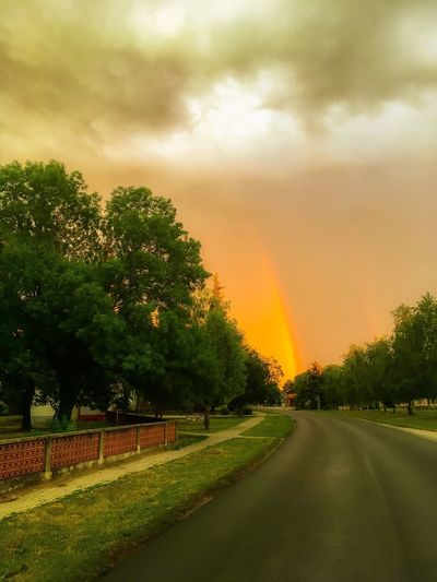 Tree The Way Forward Sky Beauty In Nature Nature Road Cloud - Sky Rainbow No People Scenics Grass Outdoors Day