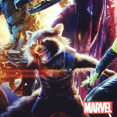 This is one Badassracoon Raccon Marvel Guardiansoftheuniverse movie