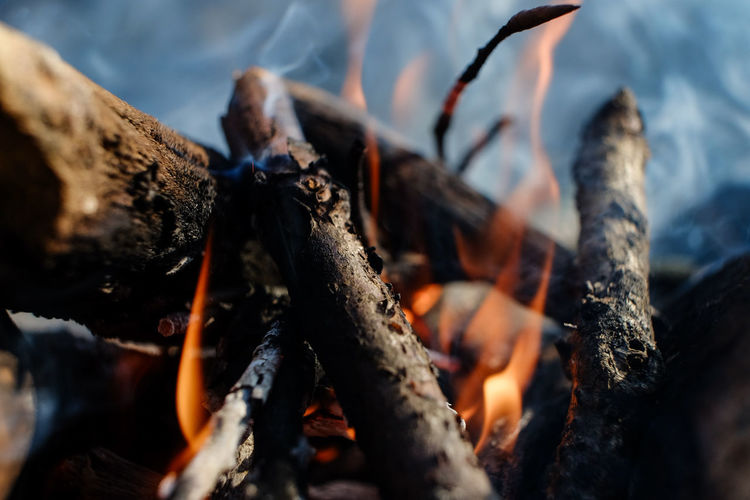 Close-up of burning firewood at campsite