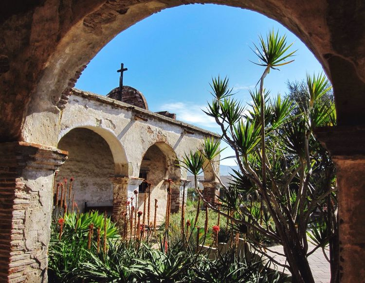 Change expectation for appreciation San Juan Capistrano Arch Architecture Built Structure Religion Spirituality Low Angle View Outdoors Place Of Worship Palm Tree Day Travel Destinations Tree History Building Exterior No People Sky