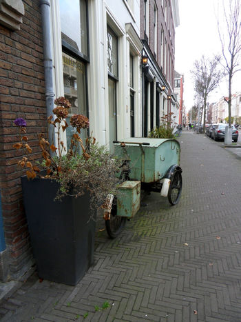 Streetphotography City Plant Footpath Mode Of Transportation Residential District No People Transportation Street Cargo Bike Sidewalk The Hague, The Netherlands EyeEmNewHere