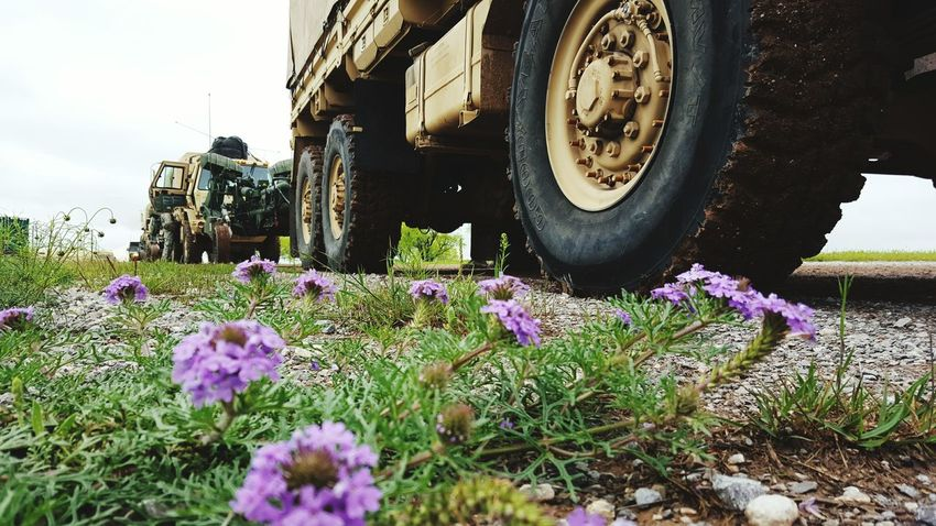 Life Calm Before The Storm Spring Springtime Tactical Tactical Vehicle Larger Than Life New Life Oklahoma Field In The Field Army Army Life Rolling Out Military Military Life Purple Lavender Flowers Wild Flowers Nature Photography Nature Nature_collection EyeEm Nature Lover Beauty Anywhere