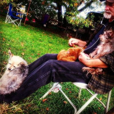 When the kids want attention Kids Dogs Doglife Outside Chillin Pops  Evartmichigan Puremichigan Backyard Parentals LovinLife Thineownlife
