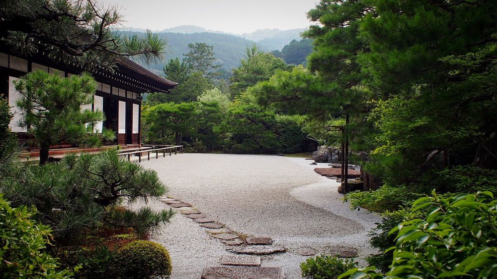 金地院 南禅寺塔頭 京都 Kyoto Kyototravel Travel Destinations Beauty In Nature Kyoto, Japan Hello World 3XSPUnity Enjoying Life Relaxation Relaxing Lifestyles Japanese Garden Kyoto Garden