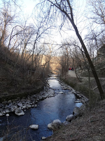 Minnehaha Falls 4/14/16 Bare Tree Beauty In Nature Canal Day Flowing Flowing Water Growth Idyllic Landscape Nature No People Non Urban Scene Non-urban Scene Outdoors Remote River Scenics Sky Stream Tabphotography Tranquil Scene Tranquility Travel Destinations Tree Water