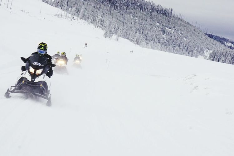 Snow Sports Yellowstone National Park Yellowstone Skidoo Snowmobiling Winter USA Travel Snow Vacations Cold Temperature Outdoors Challenging Nature Exploration