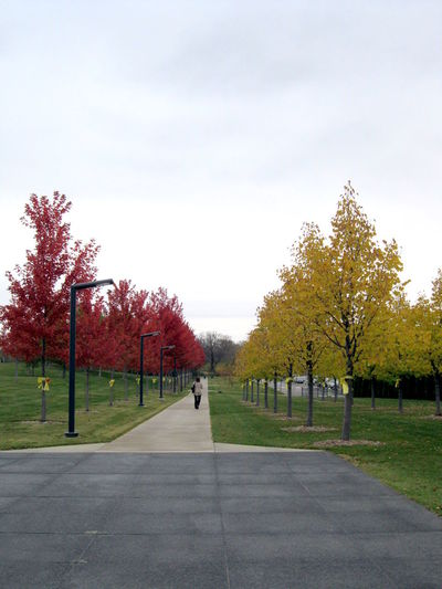 Beautiful Colourful Memory Minneapolis Minnesota Outdoors Park Path Spring Colours The Way Forward