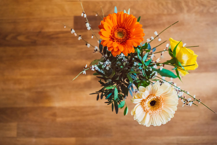High angle view of daisy flower on table