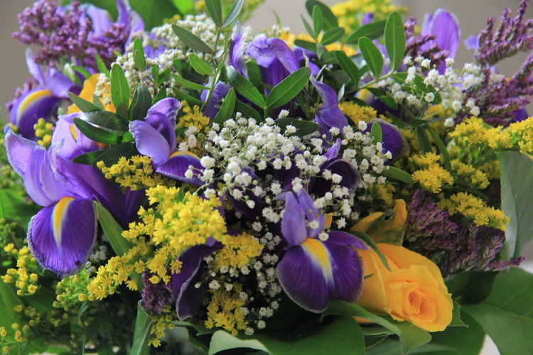 Flowering Plant Flower Plant Freshness Fragility Beauty In Nature Vulnerability  Petal Flower Head Close-up Nature Inflorescence No People Multi Colored Growth Purple High Angle View Day Bouquet Flower Arrangement Bunch Of Flowers Yellow Green Color Freesia Roses