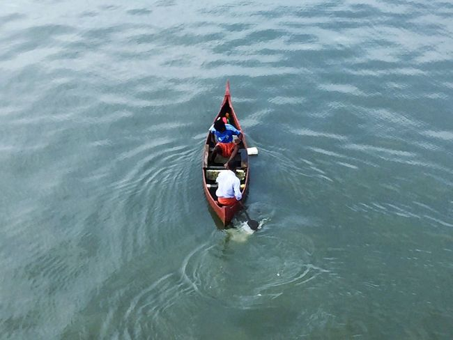 Transportation High Angle View Mode Of Transport Real People Day Water Outdoors Rear View Waterfront Nature Sitting Men Nautical Vessel Oar People Fishermen Kerala Ernakulam