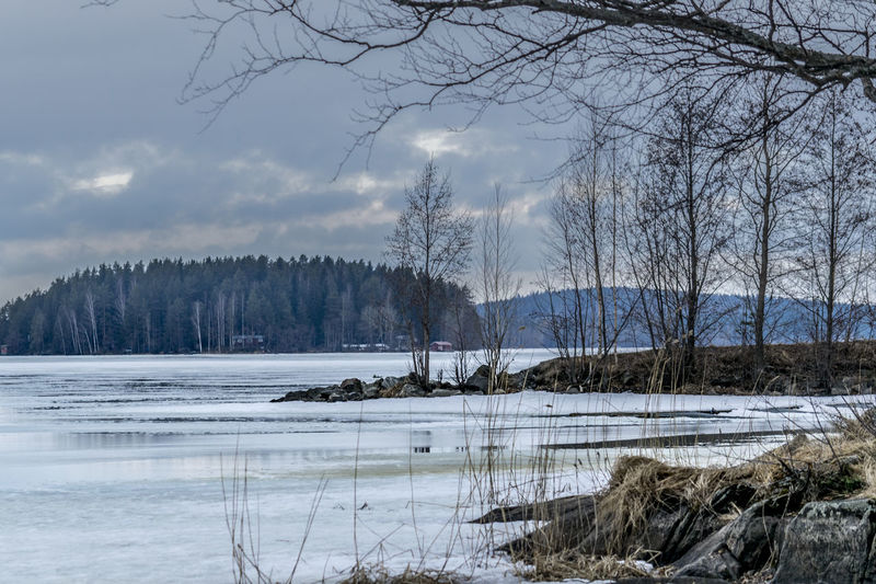 Bare Tree Beauty In Nature Cold Cold Temperature Day Frozen Lake Ice Lake Landscape Nature No People Outdoors Scenics Sky Snow Tranquil Scene Tranquility Tree Wilderness Winter