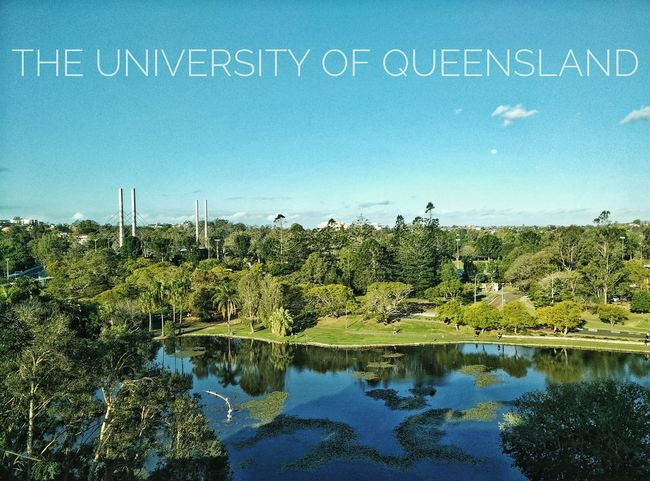 Uni University Of Queensland Australia Brisbane UQ University Campus Outdoors Tree Australia & Travel Text Water Blue Tranquility Scenics Tranquil Scene Growth Day Outdoors Waterfront Green Color Nature Green No People Non-urban Scene Beauty In Nature Garden