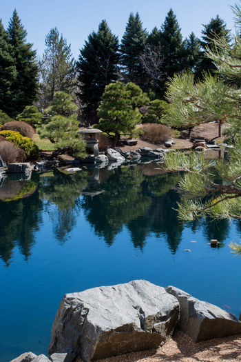 Beauty In Nature Day Lake Mountain Nature No People Outdoors Reflection Rock - Object Scenics Sky Tranquil Scene Tranquility Tree Water Zen Garden