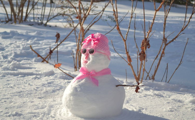 Martina, don't melt Beauty In Nature Branch Cold Temperature Covered With Snow Day Focus On Foreground Front View Nature Non-urban Scene Pink Color Scenics Season  Snow Snowwoman Sun Shades Tranquil Scene Tranquility Weather Winter