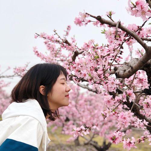 mygirl Flower