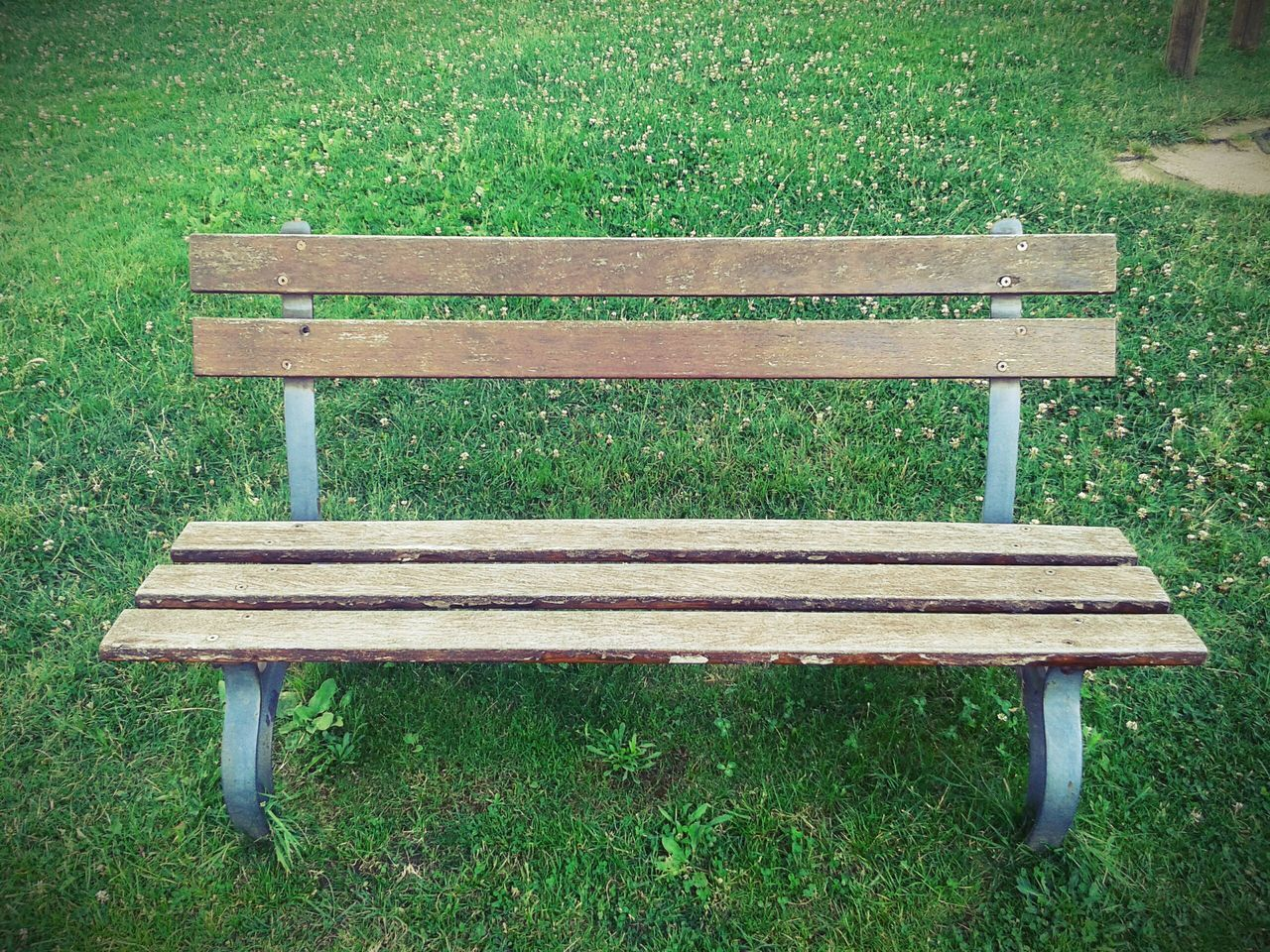 bench, grass, empty, absence, park - man made space, relaxation, seat, green color, outdoors, day, picnic table, wood - material, past, nature, no people, grassland