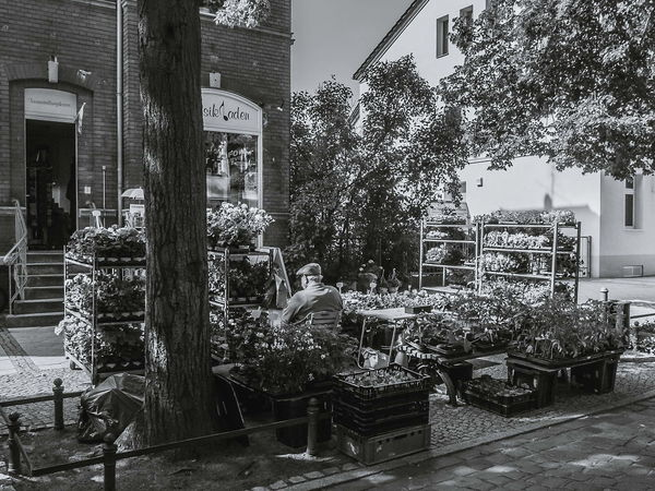 Street Market in may 2014. the flower man. FujiFilm X20 Brandenburg EyeEm Best Shots - Black + White