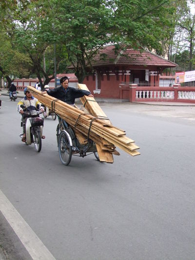 Dangerous Load! Building Exterior Casual Clothing City City Life Composition Cyclo Day Full Frame Huế Incidental People Land Vehicle Load Making A Living Mode Of Transport Outdoor Photography Outdoors Road Transportation Trees Unusual Vietnam Wood - Material