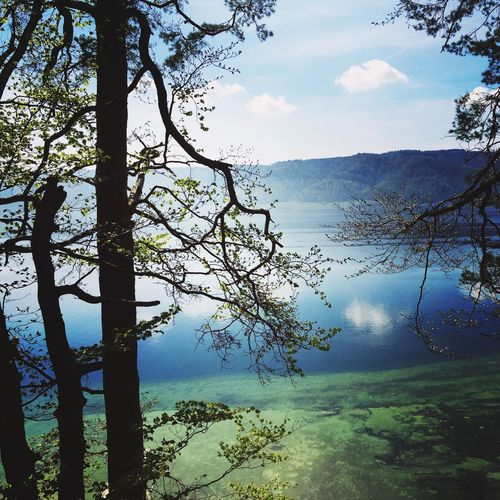 Bodensee on a sunny day Bodensee Bodenseeregion Lake Constance Lake Of Constance Germany Germany Deutschland Lake View Landscape Landscape_Collection Water Reflections Landscape_photography Nature_collection Nature The Landscapist - 2016 Eyeem Awards