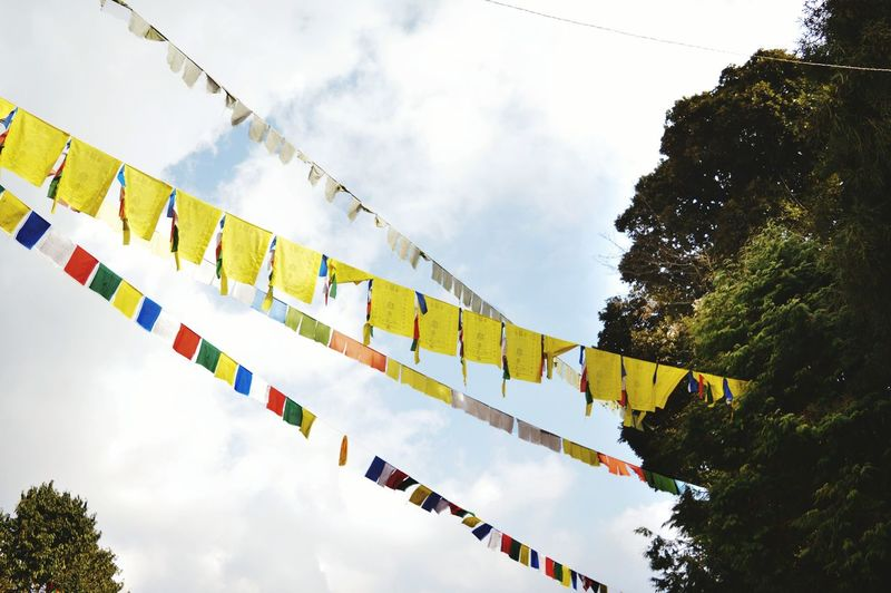 Prayer flags. Cloud - Sky Sky Hanging Arts Culture And Entertainment Low Angle View Representing Outdoors No People Day Nature Prayer Flags  Tibet Tibetan Buddhism Tibetan Prayer Flags Sikkim Sikkim, A Gem Amongst The Eastern States Of India Sikkimtourism