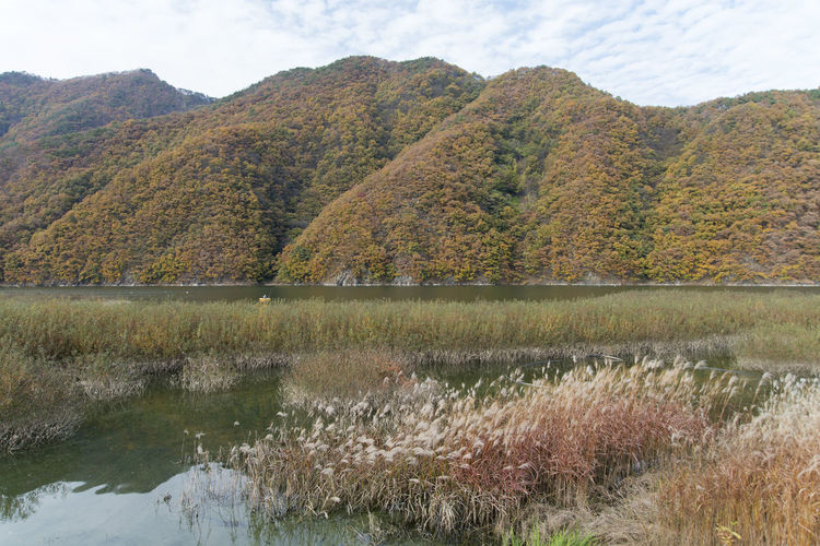 autumn landscape at Janggye Tourism Place in Okcheon, Chungbuk, South Korea Autumn Autumn River Janggye Okcheon Riverside Autumn Riverside Beauty In Nature Day Grass Lake Landscape Mountain Nature No People Outdoors Plant River Riverside Photography Scenics Sky Tranquil Scene Tranquility Tree Water