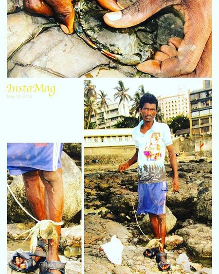 Crabs....catching in action PeopleOfTheOceans People Of The Oceans