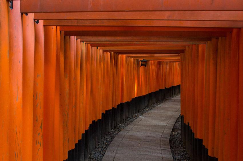 Torii Japanese Shrine